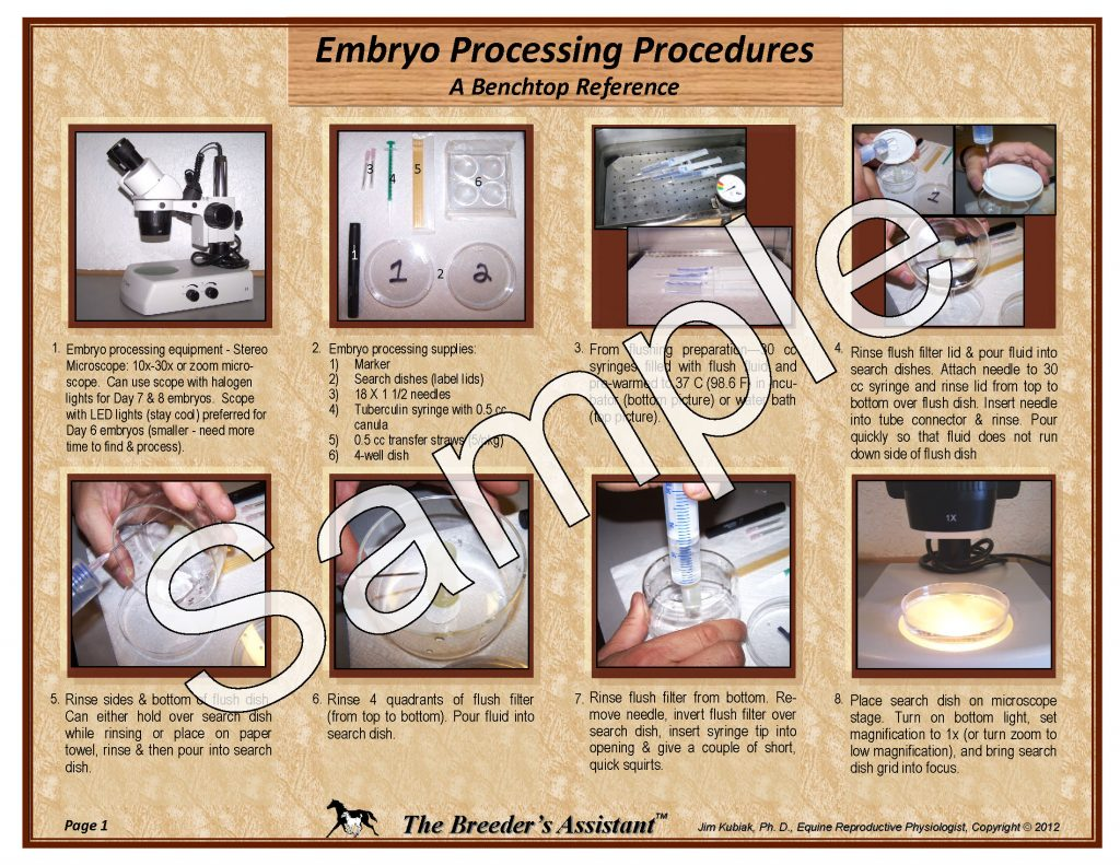 Embryo Processing Procedures - The Breeders Assistant