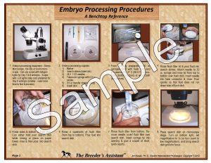 Embryo Processing Pg 1 - Sample