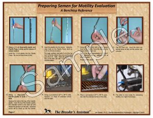 Preparing Semen for Motility Evaluation pg2 Sample