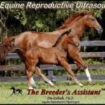 Equine Reproductive Ultrasound DVD