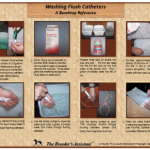 Washing Flush Catheters