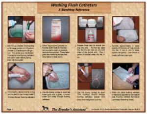 Washing Flush Catheters