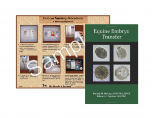 Mares: Equine Embryo Transfer Package Deal